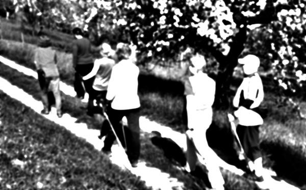 nordic-walking-kalletal